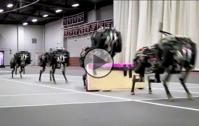 MIT researches have built a autonomous robotic cheetah that is capable of running and jumping over hurdles as it does so. Thus, it is the first 4-legged robot that can run and jump over obstacles