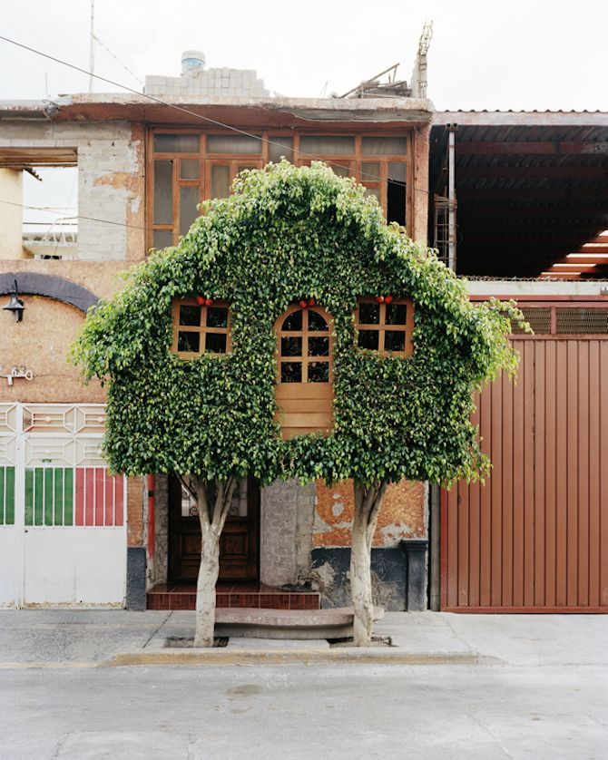 "Photographer Erwan Frichou ""worked with gardeners to create interesting shapes and invited people in the street to climb those peculiar topiary trees""Erwan Fichou, Topiaries Trees, Tree Houses, Art, Treehouse, Gardens, Trees House, Architecture, Green House"