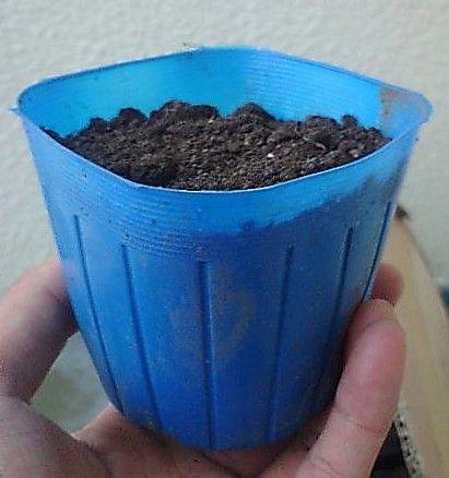 Plastik - dobry i użyteczny w każdym domu, firmie, fabryce i mieszkaniu - http://www.echokard.pl/plastik-dobry-i-uzyteczny-w-kazdym-domu-firmie-fabryce-i/