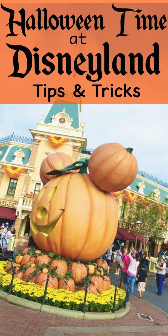 Disneyland Halloween tips, tricks and secrets. Things you can't miss when visiting Disneyland at Halloween Time. Halloween Decor, food and rides.