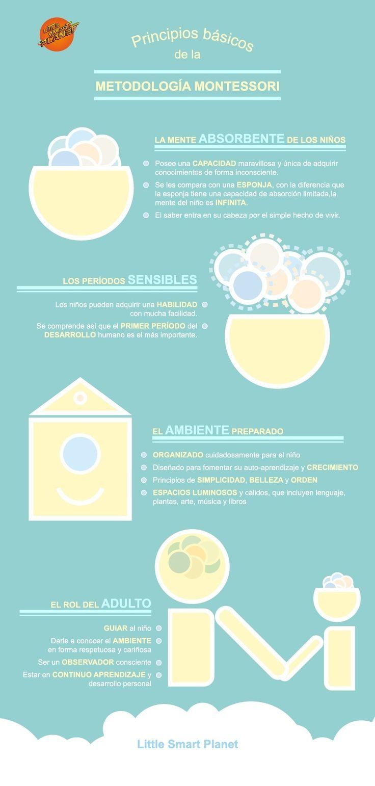 """Hola: Compartimos una infografía sobre """"Método Montessori - 4 Principios Básicos"""". Un gran saludo.  Elaboración: LittleSmartPlanet  Enlaces de interés: Alumnos Protagonistas – 8 Accione..."""