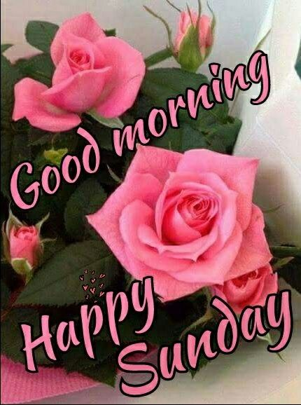 Pin Van Soekhoe Urmila Op Goodmorning Sunday Morning Images Happy