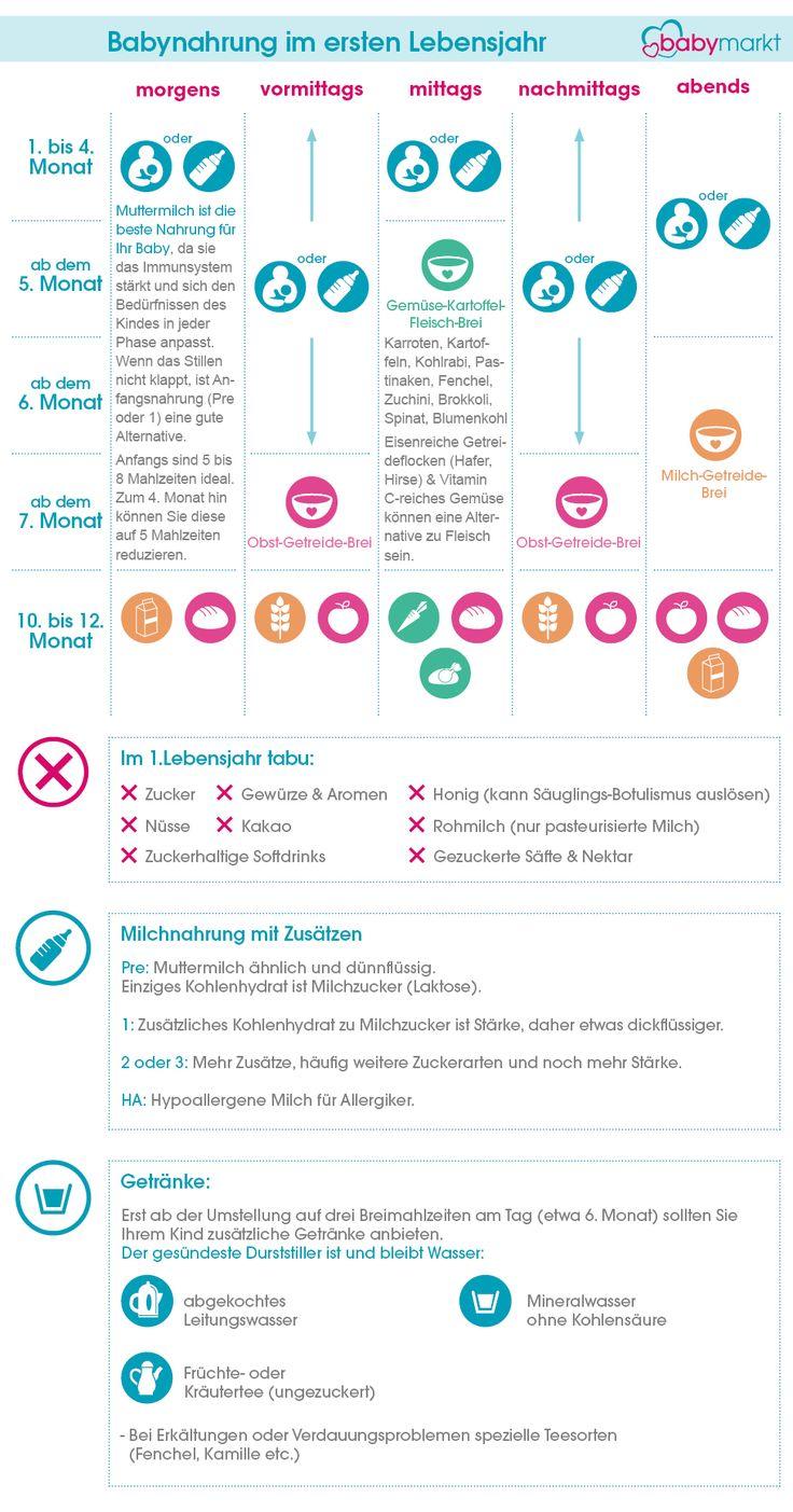 Infografik: Babynahrung im ersten Lebensjahr   – Babynahrung: Muttermilch, Beikost, Babybrei & Ernährungs-Trends