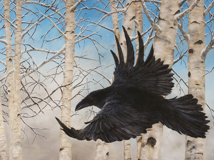 """""""Winter Glide"""" 2016 -by James M. Clow 48""""x 36""""x 1.75"""" Acrylic on Canvas This painting took three blue ribbons at the Reflections of Nature art exhibition.  Best of Show, 1st Place in division Drawing and Painting, and 1st Place class Birds."""