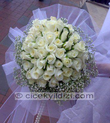 Canlı Gelin Çiçeği https://www.cicekyildizi.com/gelin-el-cicegi