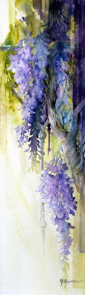 Wisteria watercolor
