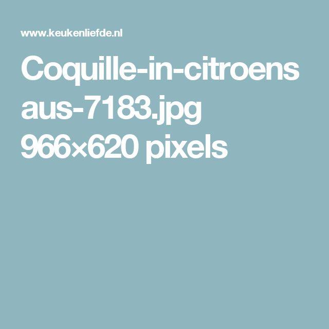 Coquille-in-citroensaus-7183.jpg 966×620 pixels