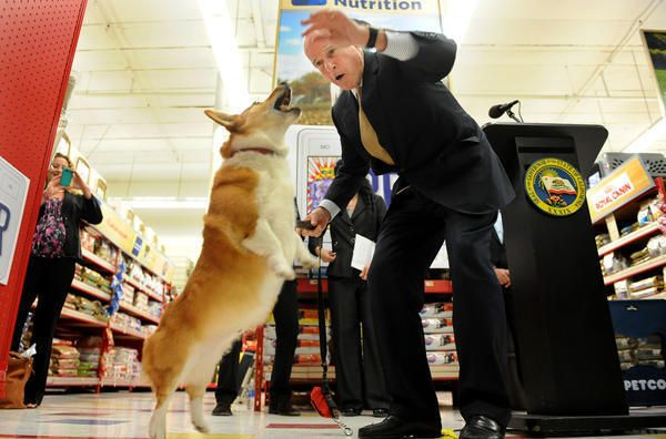 #Sutter Brown, Gov. Jerry Brown's famous dog, has died - The San Diego Union-Tribune: The San Diego Union-Tribune Sutter Brown, Gov. Jerry…