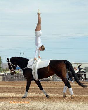 handstand on horseback - Vaulting