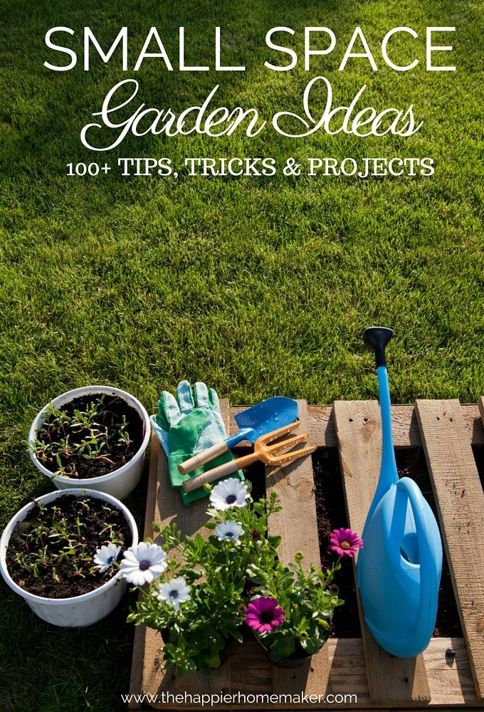 Small Space Garden Ideas-over 100 tips, tricks, and projects to help you garden and enjoy plants even when you're short on space!