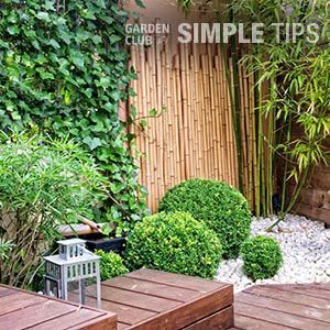 Tricks to Make a Small Space Look Bigger | Garden Club