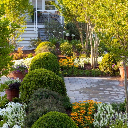 Best 25 Southern Landscaping Ideas On Pinterest: Best 25+ Border Plants Ideas On Pinterest