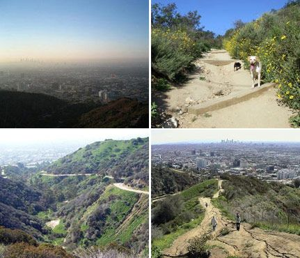 Best Weekend Hikes for Sporty Gals: Runyon Canyon in Los Angeles has the best trails for people watching! #SelfMagazine