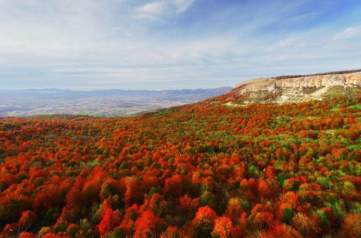«Осень — это вторая весна, когда каждый лист — цветок».   © Альбер Камю