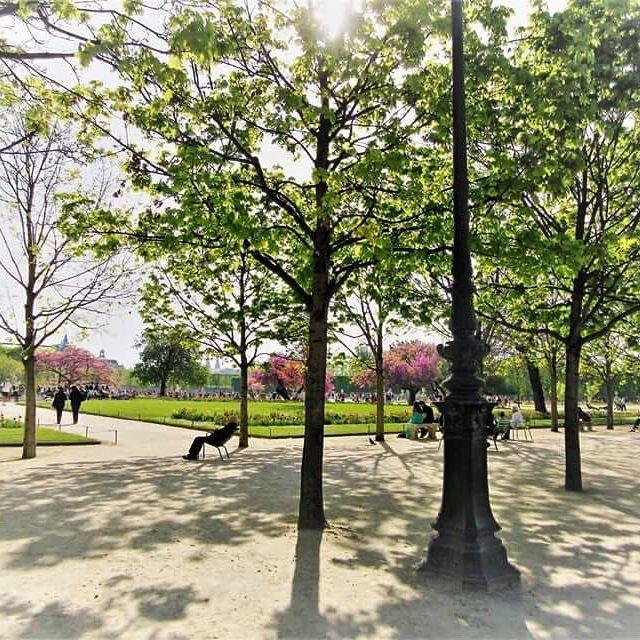 🇫🇷Jardin des Tuileries #paris #france #travel #explore #jardin #gardens #jardindestuileries #spring #april #lake #relax #momentsintime #melbournelifelovetravel #visitparis #visitfrance #beautiful #light #trees