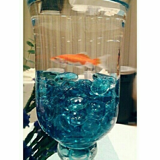 Best goldfish centerpiece ideas on pinterest