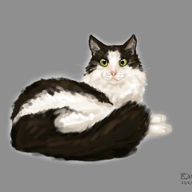 """""""Time spent with cats is never wasted."""" ~ Sigmund Freud  #illustration #digitalart #cats"""