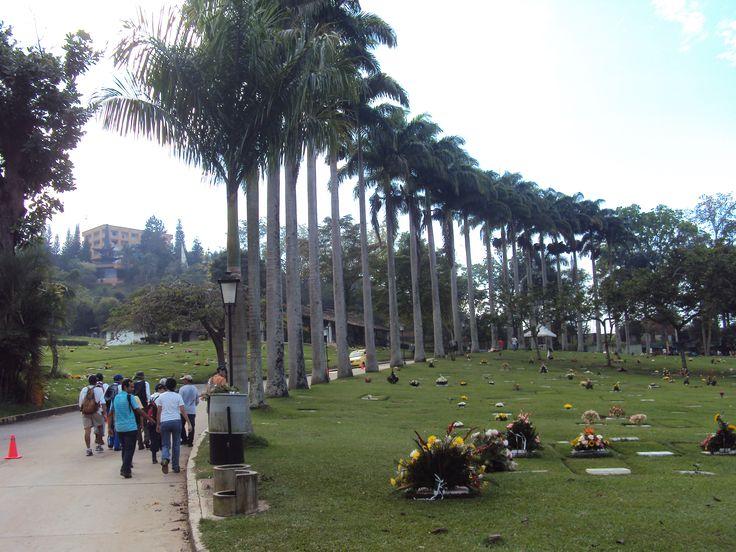 Caminata Parque San Pio a Km 9 – Diciembre 26 de 2010