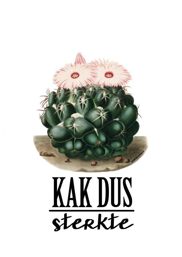 Postkaart KAK sterkte Deze geweldig KAK sterkte kaart is een ontwerp van Lumacreation. Het ontwerp is helemaal van nu. Vintage feelmet de o zotrendy cactus in combinati...