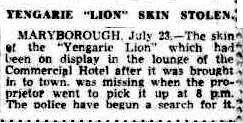 """The skin of """"Yengarie Lion"""" stolen from lounge of Commercial Hotel. Cairns Post 24 July 1946 (Trove)"""
