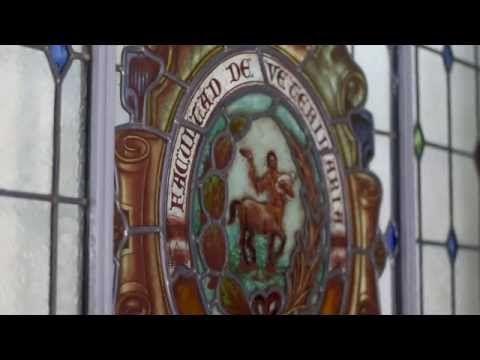 Hospital Veterinario de la Universidad de León - YouTube