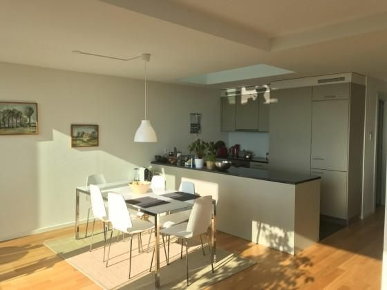Central modern, sunny apartment with stunning v... : This two bedroom apartment, shared with another young professional (UN), overlooks Lake Geneva and the Saleve. It's ideally situated close to the river, shops, and transport, with easy access to Na...