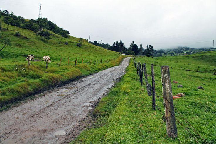 Caminos rurales de Colombia
