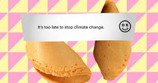 Image result for ok cookie company