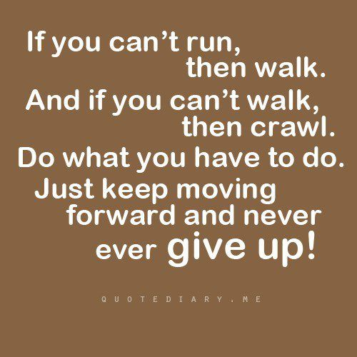 Never ever give up!: Cpa Exams, Fit, Remember This, Inspiration Words, Bears, Health Coach, Keep Moving Forward, Weights Loss, Inspiration Quotes