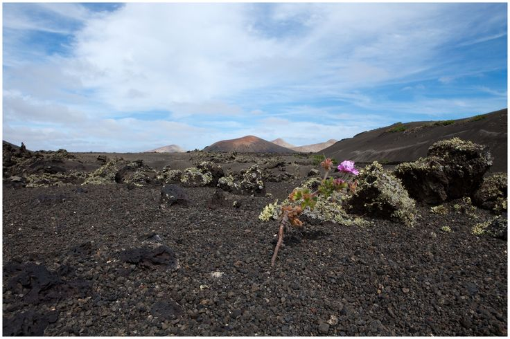 Lanzarote The strange volcanic soils of Lanzarote greet you also the islands serenity and silence urge individuals to disconnect��_