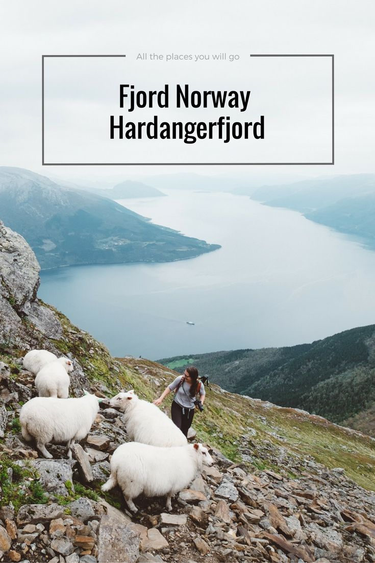 Places to go in Fjord Norway! Check out our blog about the Hardangerfjord | Travel & Photography blog All the places you will go
