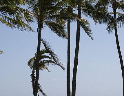 What to know about vacationing in Hawaii in October | Go Visit Hawaii