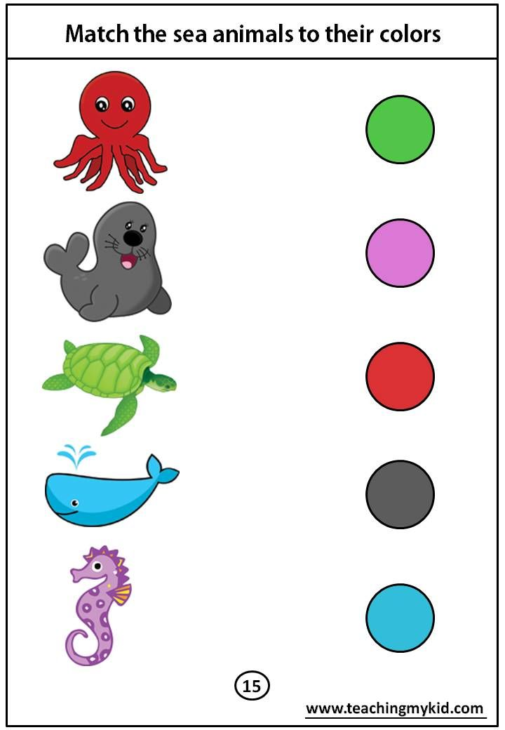 kindergarten worksheets free – Match the sea animals to their colors
