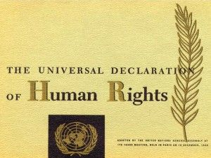 This charter was adopted by all members of the UN, why should it be naive to pressure them into respecting it?