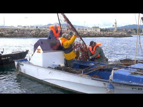 IX Jornada del Día de la Asociación y del Medio Ambiente Marino @ Bouzas, Ria de Vigo. - http://maxblog.com/16209/ix-jornada-del-dia-de-la-asociacion-y-del-medio-ambiente-marino-bouzas-ria-de-vigo-2/