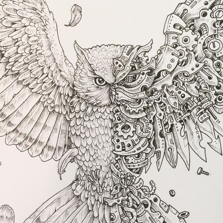 imagimorphia coloring pages 17 best images about artist kerby rosanes on pinterest