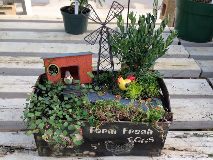 Using plants and miniature items to create a scene for in your house or outside,