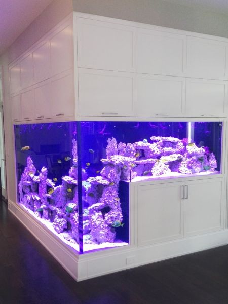 Large Custom Residential Aquarium that wraps around the corner by Living Color Aquariums