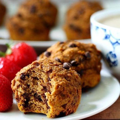 Kodiak Cake Muffin Recipe With Chocolate Mix