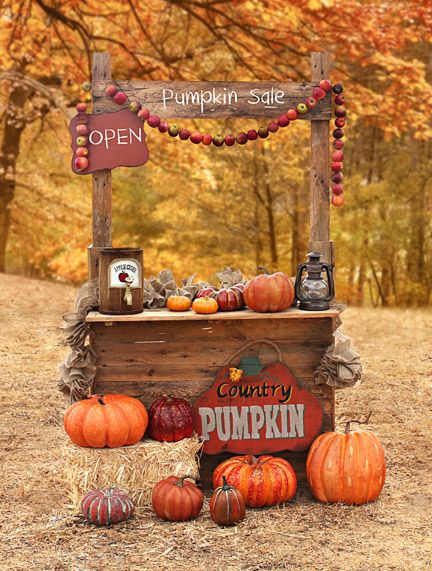 Pumpkins for Sale - 60x80-fall, pumpkins, autumn, apples, orchard, stand, leaves, trees