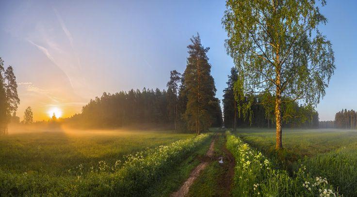 35PHOTO - Лашков Фёдор - Любимый парк, или встречая рассвет.