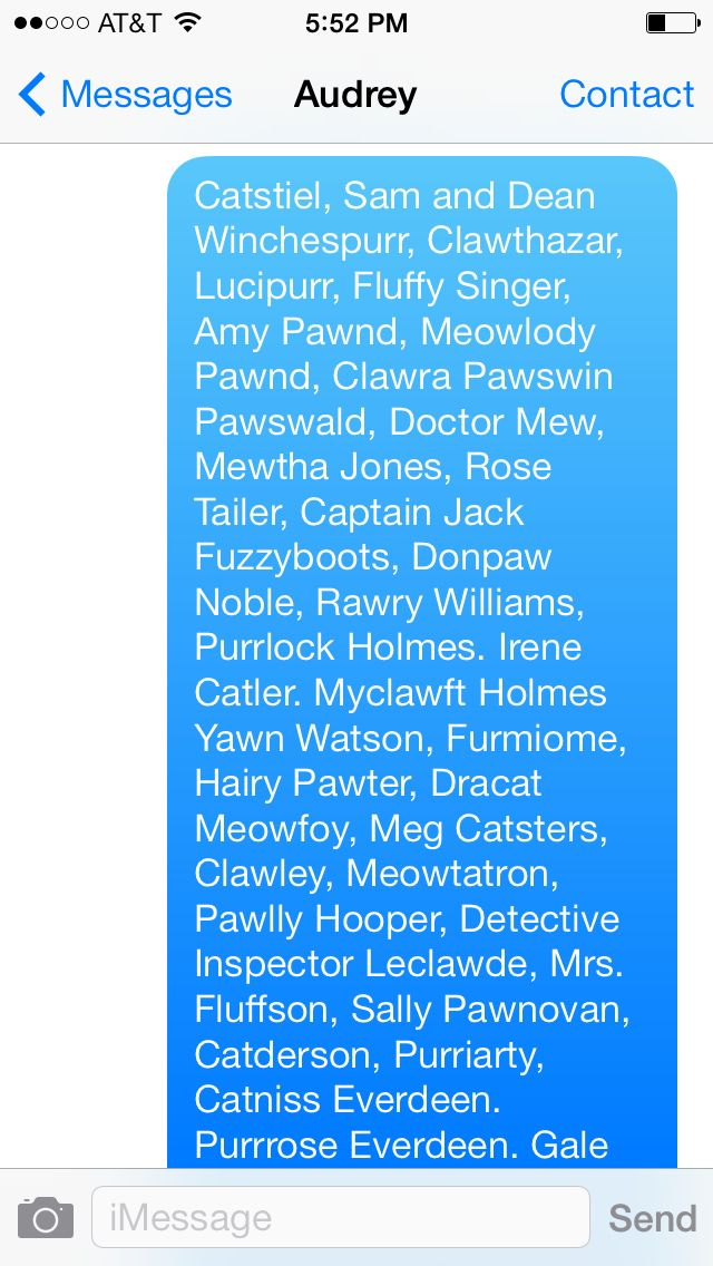 Some cat-themed names I made up for fictional characters ...