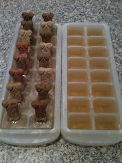 Frozen dog treats... Ice cube tray or trays -Milk Bones -Broth; This