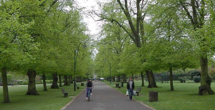 A bit of that world famous Southampton greenery.