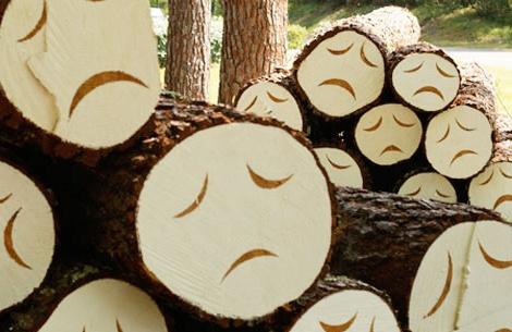 Poor little trees :( Steven Burke