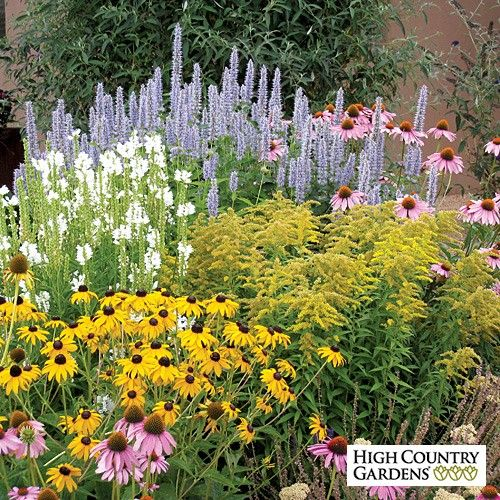 24 best images about landscape ideas for michigan on for Small garden flower beds