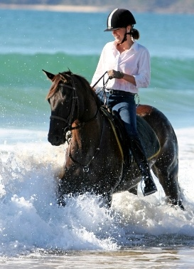 Swap sunbaking for saddles with Equathon's horse riding tours on the beach at Noosa North Shore.
