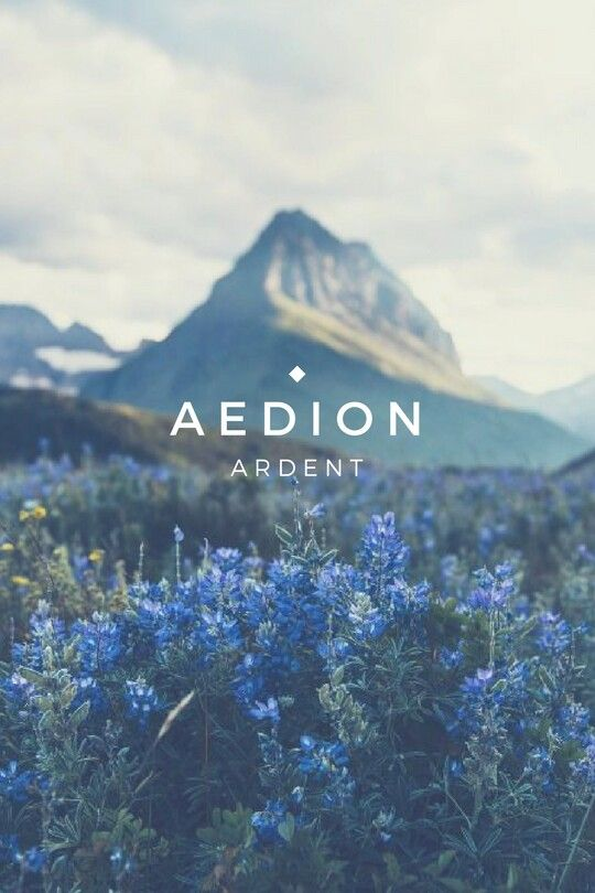Aedion name meaning