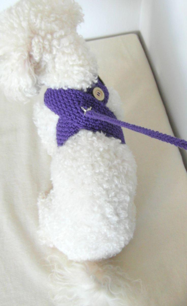 Adjustable Harness with Matching leash Friendly DOG by BubaDog