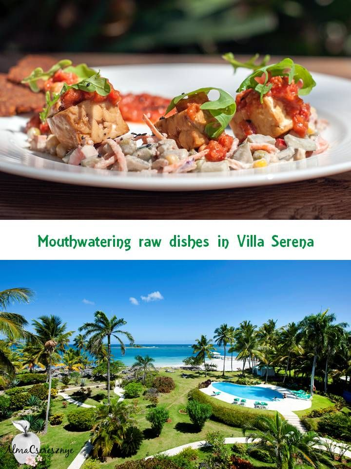 Raw vegan dishes and soul lifting retreats in Villa Serena. Art of Raw. Photo credit: Villa Serena and Art of Raw. #dominicanrepublic #samana #vegan #rawvegan #raw #retreat #villaserena